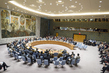 Draft Security Council Resolution on Syria Vetoed 1.0