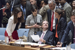 Draft Security Council Resolution on Syria Vetoed 10.404681