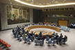 Security Council Extends Mandate of MINUSTAH, Establishes Successor Mission 0.60801154