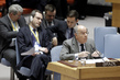 Security Council Extends Mandate of MINUSTAH, Establishes Successor Mission 4.107749