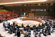 Security Council Briefed by Heads of Committees on Terrorism and Non-proliferation 0.96935064