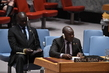 Security Council Extends Mandate of UN Interim Force for Abyei 0.17706566