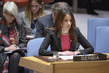 Security Council Discusses Developments in Kosovo 4.0971155