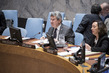Security Council Considers Situation in Syria 4.0975237