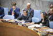 Security Council Considers Situation Concerning Iraq 4.0975237
