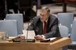 Security Council Considers Situation Concerning Iraq