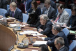 Security Council Considers Protection of Medical Care in Armed Conflict 0.058215722