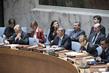 Security Council Considers Protection of Medical Care in Armed Conflict 0.0504163