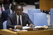 Security Council Considers Situation in Mali 1.1727988