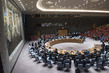 Security Council Considers Situation in Mali 1.4659984