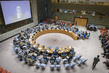 Security Council Considers Situation in Middle East, Including Palestinian Question 0.4573096