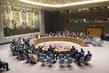 Security Council Welcomes Deployment of Sahel Joint Force 4.0920315