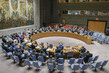 Security Council Extends Sanctions on Democratic Republic of Congo 4.0920315