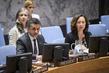 Security Council Renews Arms Embargo on Democratic Republic of Congo 0.038204964