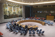 Security Council Renews Mandate of UNDOF 0.09977064