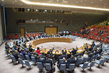 Security Council Extends Mandate of Mali Mission 1.1727988