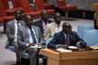 Security Council Extends Mandate of Mali Mission 1.1849525