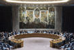 Security Council Adopts Resolution on Use of Landmines 4.0882483