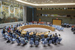Security Council Establishes Second Mission for Colombia Peace Process 0.09977064