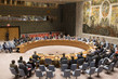 Security Council Considers Situation Concerning Democratic Republic of Congo 4.08832