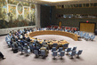 Security Council Considers Situation in Central African Republic 4.08832