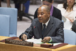 Security Council Considers Developments in West Africa and Sahel 4.08832
