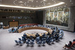 Security Council Considers Situation Concerning Iraq 4.08832