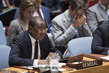 Security Council Debates Enhancing African Capacities 4.0873084