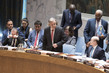 Security Council Debates Enhancing African Capacities