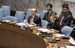 Security Council Considers Situation in Liberia