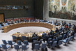 Security Council Considers Draft Report to General Assembly 1.0