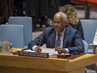 Security Council Considers Peace and Security in Sahel 0.058501944
