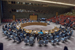 Security Council Considers Peace and Security in Sahel 1.0