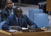 Security Council Considers Peace and Security in Sahel