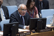 Security Council Discusses Developments in Kosovo 1.0