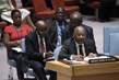 Security Council Considers Situation Concerning Democratic Republic of Congo 1.0