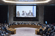 Security Council Considers Situation in Syria 0.10811045
