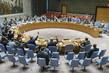 Security Council Imposes Sanctions Regarding Mali Situation 1.1730129