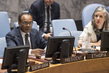 Security Council Briefed on Mission to Ethiopia 0.06545308