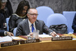 Security Council Considers Situation in Lake Chad Basin 0.057942554