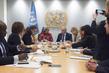 UN-EU Political Steering Committee meeting 7.228384