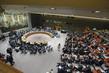 Security Council Debates Reform of UN Peacekeeping 1.0