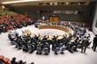 Security Council Adopts Resolution on Investigative Team for ISIL Crimes in Iraq 1.0729636