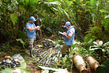 UN Mission in Colombia Extracts Weapons Caches 6.0675454