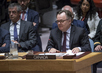 Security Council Considers Strategic Force Generation for UN Peacekeeping 0.06709556