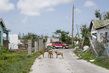 Scene from Codrington Town in Barbuda During Secretary-General's Visit 3.549492