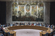 Security Council Considers Maintenance of International Peace and Security 4.0769386