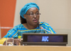 High-level event on Financing Africa's Infrastructure and Agricultural Development 1.0