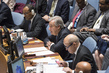 Security Council Considers Joint Force of Sahel G5 0.5072413