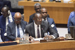 Security Council Considers Joint Force of Sahel G5 0.67632174